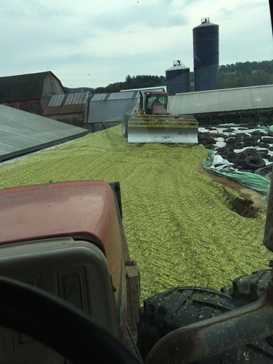 Scott L - Our bunk is full now on to some custom chopping!! Then back to some dry chopped hay for bedding in western NY